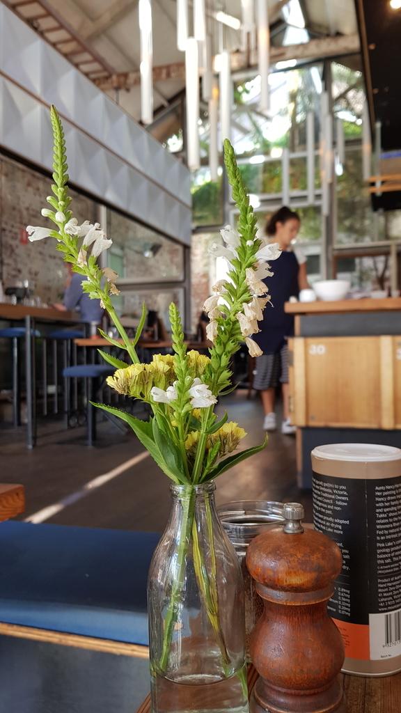 20190206_090035.jpg - 【澳洲.墨爾本】2019自駕。Auction Rooms Cafe美味的早午餐環境超美網美必來