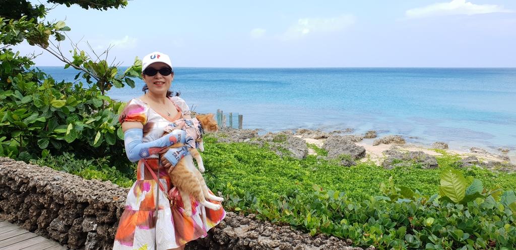 20200513_095451.jpg - 【屏東.墾丁】砂島貝殼展示館。秘境砂島沙灘超美保育中勿進。砂島海水正藍美到爆炸