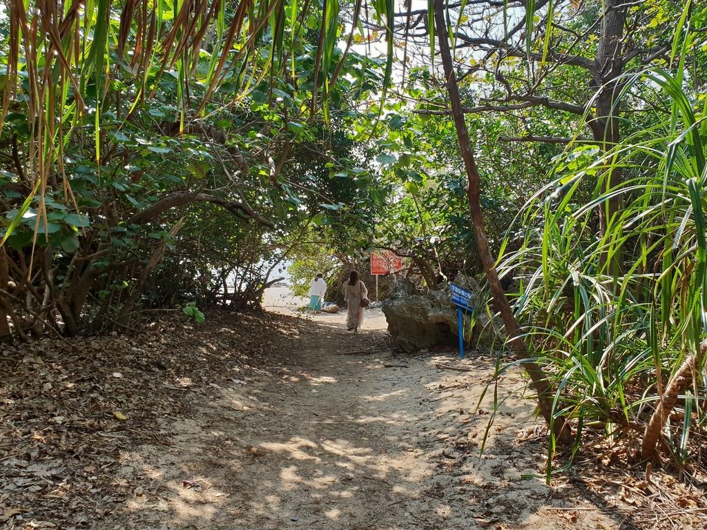 241280.jpg - 【屏東.恆春】小峇里島岩。記得帶肉泥。可以享受被貓咪包圍的感覺。這裡夕陽超美麗