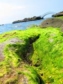 【台北】北海岸石門洞景點。美麗的貝殼砂海灘。熱門觀看夕陽&潮間帶景點:IMG_9700.JPG