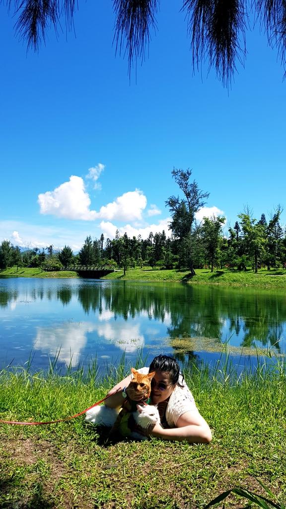 20180627_094439.jpg - 【台東】旅行貓日記全台最美公園。台東森林公園琵琶湖外拍最佳地點