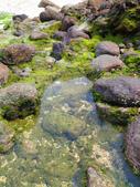 【台北】北海岸石門洞景點。美麗的貝殼砂海灘。熱門觀看夕陽&潮間帶景點:IMG_9623.JPG