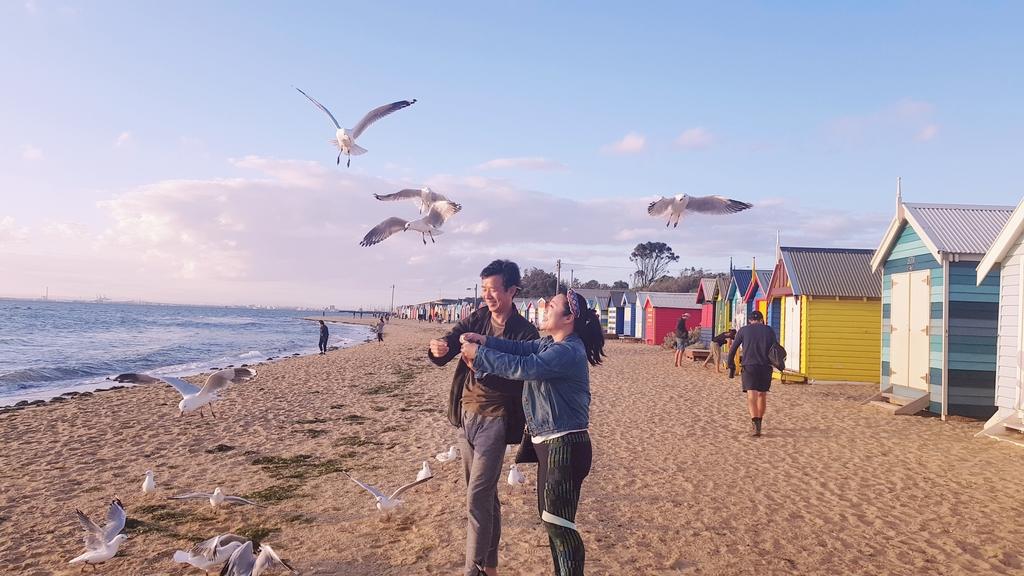 20190213_194242.jpg - 【澳洲.墨爾本】2019免費景點。Brighton Beach Bath Boxes 海邊彩色小屋