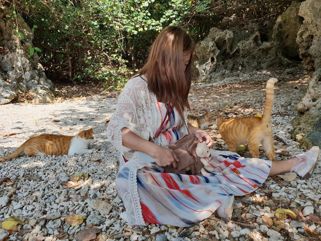 241262.jpg - 【屏東.恆春】小峇里島岩。記得帶肉泥。可以享受被貓咪包圍的感覺。這裡夕陽超美麗
