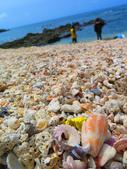 【台北】北海岸石門洞景點。美麗的貝殼砂海灘。熱門觀看夕陽&潮間帶景點:IMG_9591.JPG