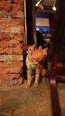 【台北.大安區】舒服生活 Truffles Living寵物友善餐廳。調酒.咖啡.甜點.牛肉麵:20190523_200556.jpg