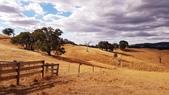 【澳洲.墨爾本】2019住宿推薦。Wirraway Farm Stay超美麗農場景致:20190211_175357.jpg
