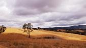 【澳洲.墨爾本】2019住宿推薦。Wirraway Farm Stay超美麗農場景致:20190212_092936.jpg