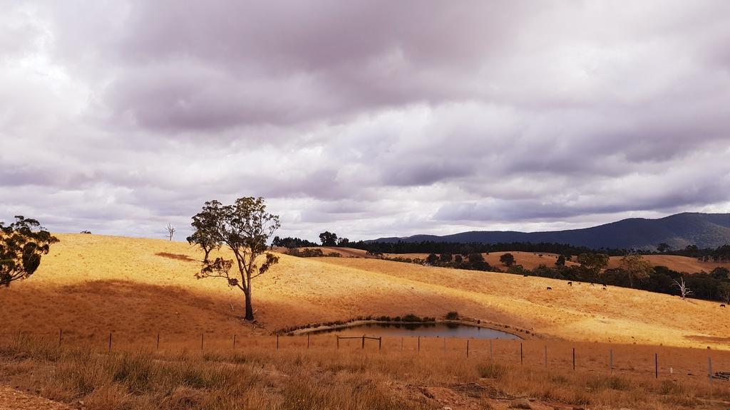 20190212_092936.jpg - 【澳洲.墨爾本】2019住宿推薦。Wirraway Farm Stay超美麗農場景致