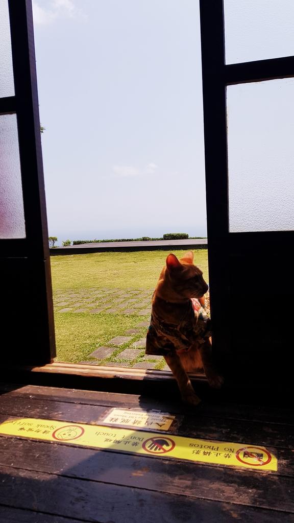 20190420_112041.jpg - 【台東.都蘭】月光小棧。望見最美的都蘭海。日式建築下悠閒的下午茶時光