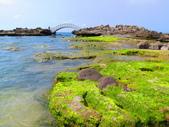 【台北】北海岸石門洞景點。美麗的貝殼砂海灘。熱門觀看夕陽&潮間帶景點:IMG_9698.JPG