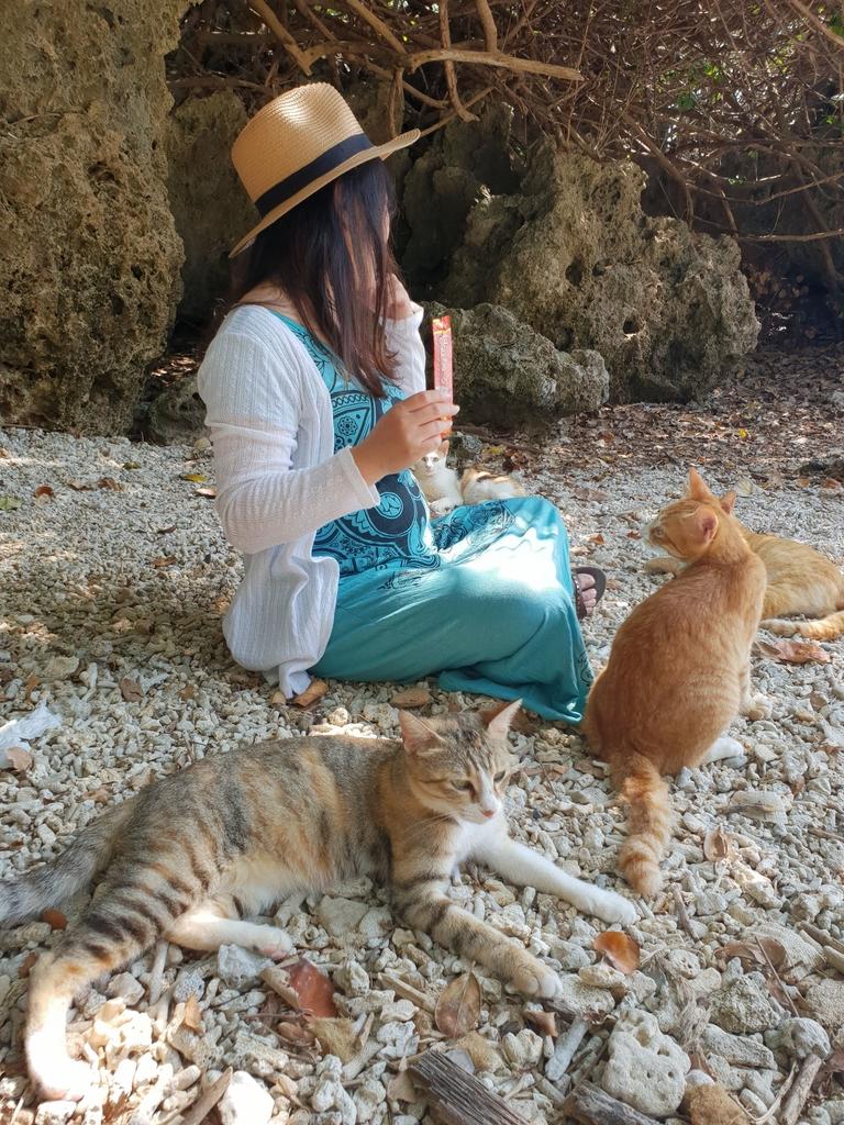 241264.jpg - 【屏東.恆春】小峇里島岩。記得帶肉泥。可以享受被貓咪包圍的感覺。這裡夕陽超美麗