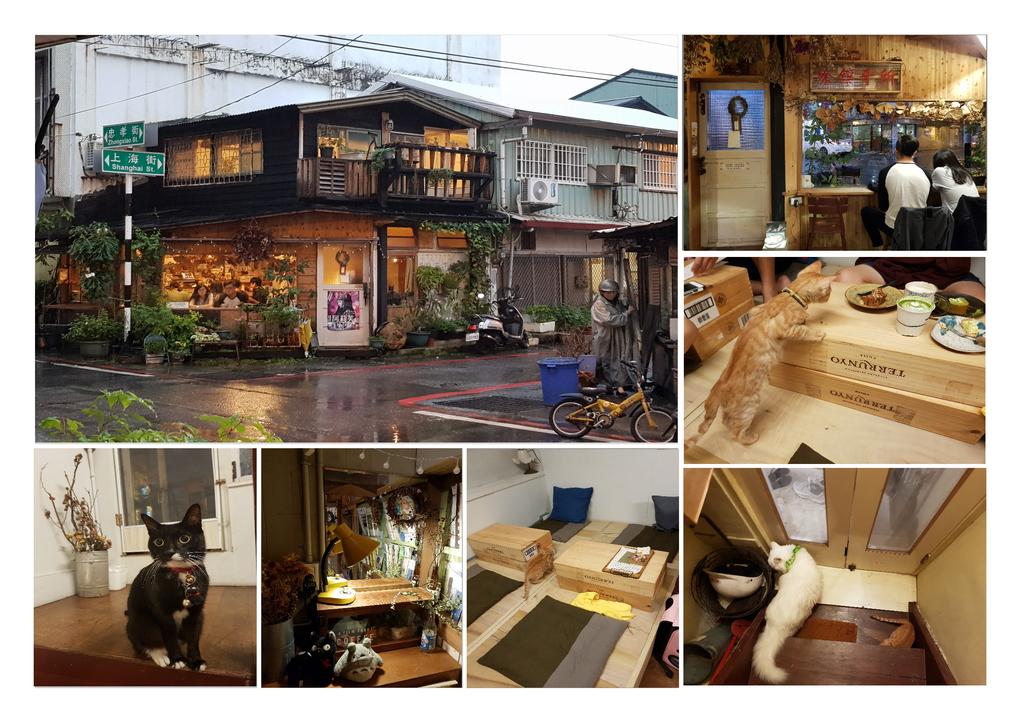 咖啡花環境圖.jpg - 【花蓮】日式古宅遇見花&貓。咖啡花優質手做甜點。貓奴必推必到訪