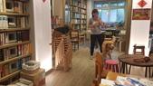 【中和.永和】智光商職巷弄中。文青二手書店。店狗好可愛的綠書店:20191101_144930.jpg