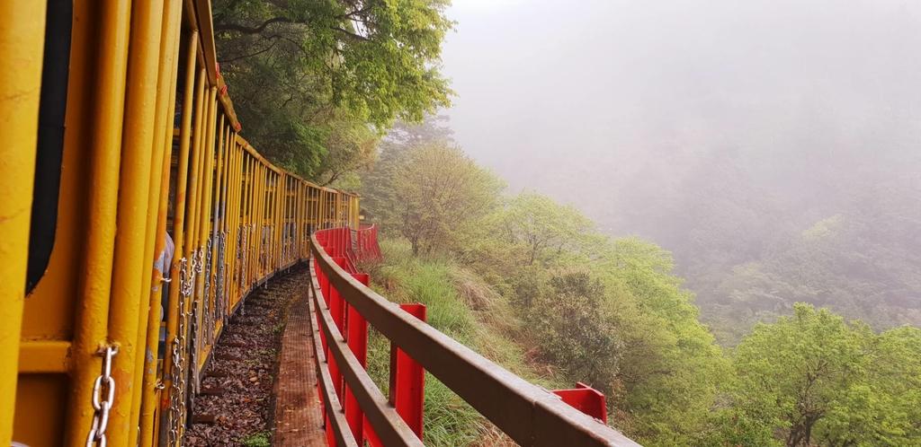 107195.jpg - 【宜蘭】2020太平山森林鐵路蹦蹦小火車。特惠票$50