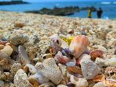【台北】北海岸石門洞景點。美麗的貝殼砂海灘。熱門觀看夕陽&潮間帶景點:IMG_9593.JPG
