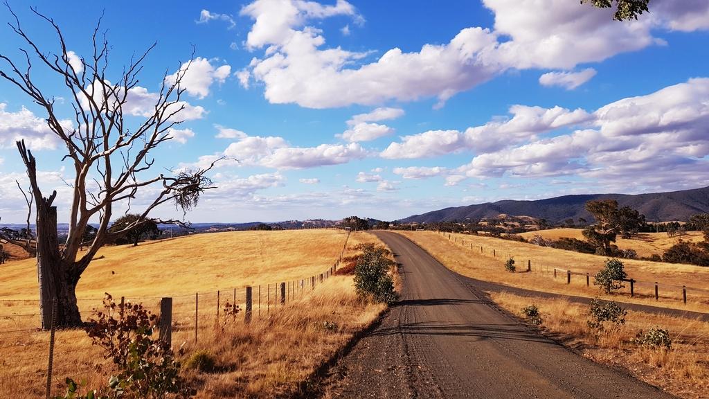 20190211_183152.jpg - 【澳洲.墨爾本】2019住宿推薦。Wirraway Farm Stay超美麗農場景致