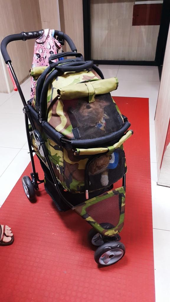 147006.jpg - 【台北.永和】沛德奧PETTRO寵物推車。貓狗都適合。輪子超好推簡易收納超輕骨架