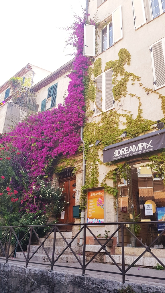 20190625_111932[1].jpg - 【2019。南法】Antibes昂蒂布尋找畢卡索最後故居。畢卡索博物館散散步