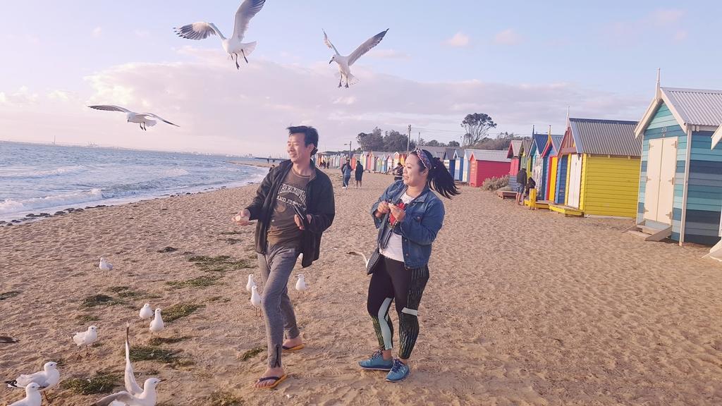 20190213_194226.jpg - 【澳洲.墨爾本】2019免費景點。Brighton Beach Bath Boxes 海邊彩色小屋