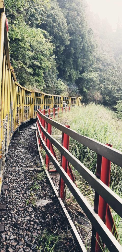 107191.jpg - 【宜蘭】2020太平山森林鐵路蹦蹦小火車。特惠票$50