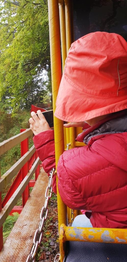 107198.jpg - 【宜蘭】2020太平山森林鐵路蹦蹦小火車。特惠票$50