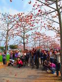 【台南】林初埤。季節限定美麗的木棉花道:IMG_9510.JPG