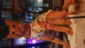 【台北.大安區】舒服生活 Truffles Living寵物友善餐廳。調酒.咖啡.甜點.牛肉麵:20190523_201632.jpg