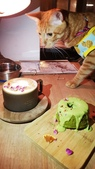 【台北.大安區】舒服生活 Truffles Living寵物友善餐廳。調酒.咖啡.甜點.牛肉麵:20190523_202252.jpg
