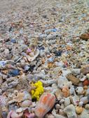 【台北】北海岸石門洞景點。美麗的貝殼砂海灘。熱門觀看夕陽&潮間帶景點:IMG_9588.JPG