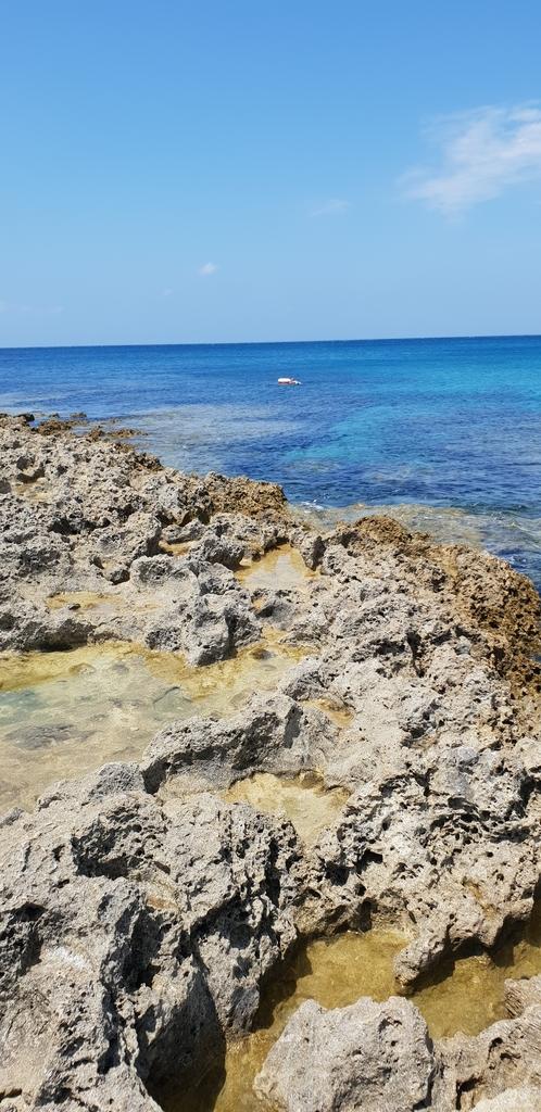20200513_103023.jpg - 【屏東.墾丁】砂島貝殼展示館。秘境砂島沙灘超美保育中勿進。砂島海水正藍美到爆炸