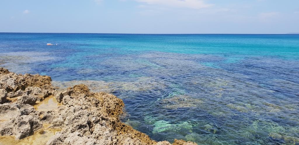 20200513_103029.jpg - 【屏東.墾丁】砂島貝殼展示館。秘境砂島沙灘超美保育中勿進。砂島海水正藍美到爆炸