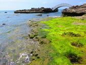 【台北】北海岸石門洞景點。美麗的貝殼砂海灘。熱門觀看夕陽&潮間帶景點:IMG_9710.JPG
