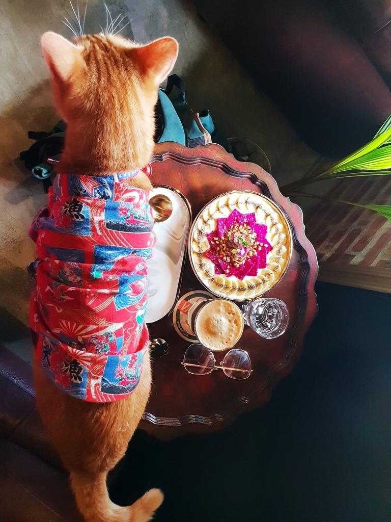 138783.jpg - 【花蓮.市區】下午茶推薦。Unconditonal Caffee無設限咖啡推新鮮水果優格盤&檸咖啡