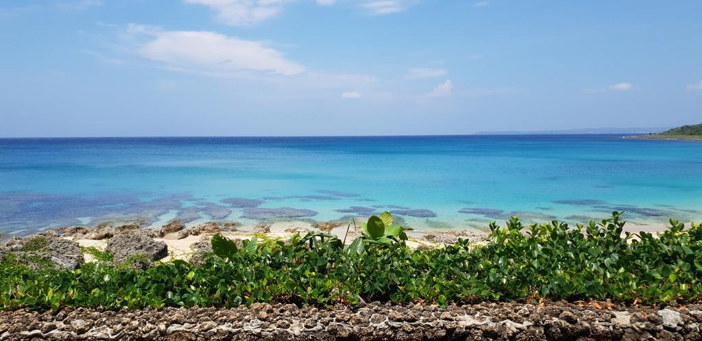 20200513_104156.jpg - 【屏東.墾丁】砂島貝殼展示館。秘境砂島沙灘超美保育中勿進。砂島海水正藍美到爆炸