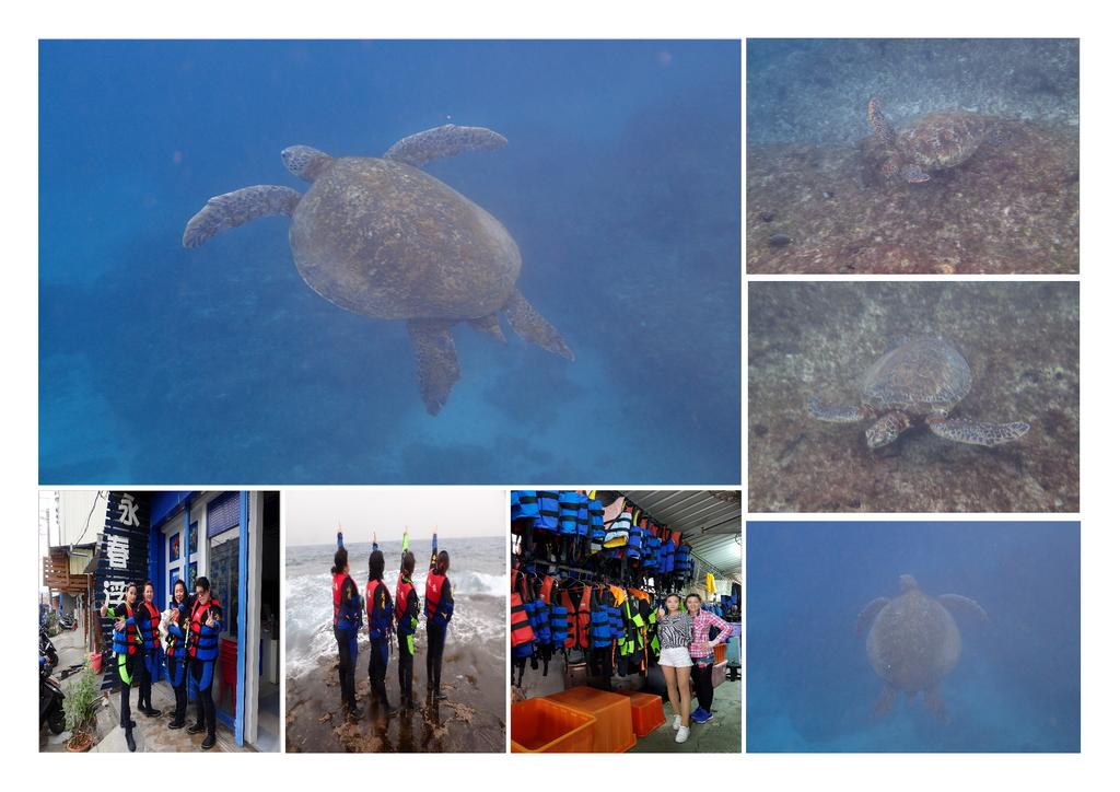 小琉球.jpg - 【屏東】12月鳳鼻頭--小琉球一日遊路線。浮淺玻璃船賞海龜行程