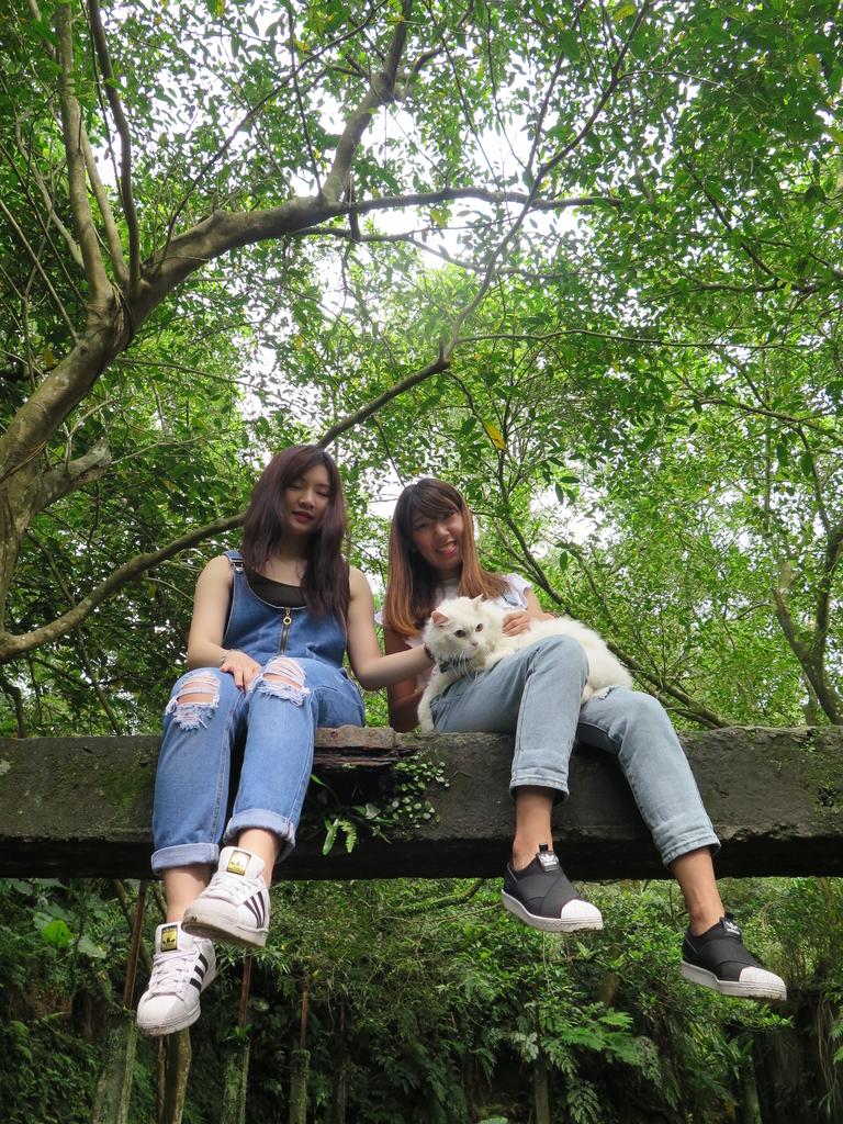IMG_1837.JPG - 【台北.平溪】平溪小祕境。偶像劇妹妹拍攝地。石底大斜坑拍寵物寫真球球篇