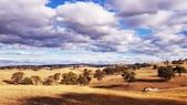 【澳洲.墨爾本】2019住宿推薦。Wirraway Farm Stay超美麗農場景致:20190211_182913.jpg