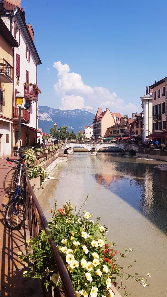 20190701_164526.jpg - 2019【法國】Annecy安錫或阿訥西: 阿爾卑斯山下最清澈湖泊小鎮