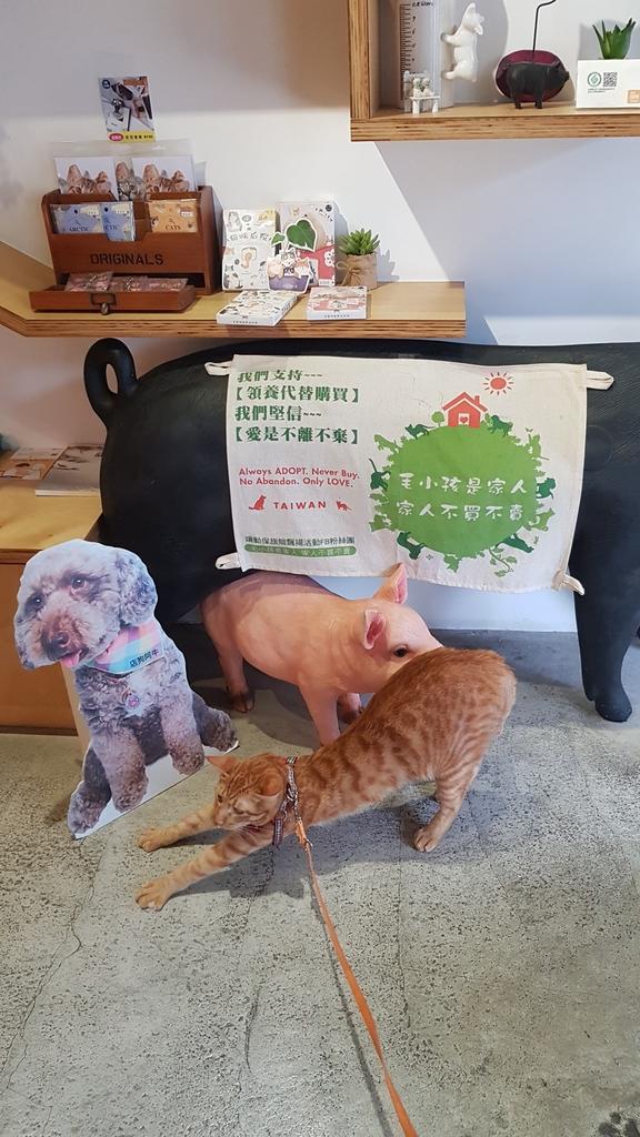 20180712_164032.jpg - 【台北.公館】彼克蕾咖啡義大利麵下午茶專賣店。寵物友善餐廳上牽繩可落地