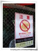 【台東】台11線152.5餵魚區:IMG_4559.JPG