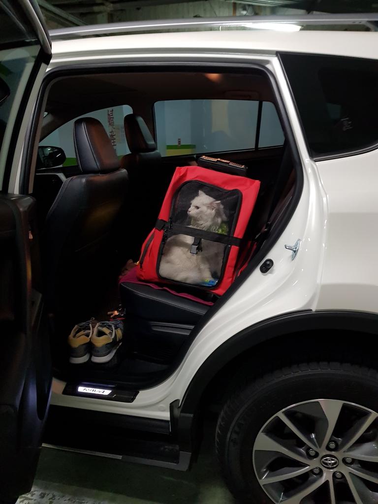 20171207_054011.jpg - 【寵物用品】貓狗外出太空背包兩款推薦(含拉桿款)。南洋峇里spa撰寫