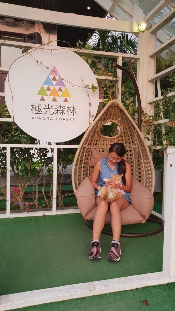 145845.jpg - 【彰化.員林】極光森林寵物友善餐廳。可觀看夜景+高鐵+超唯美帳篷包廂