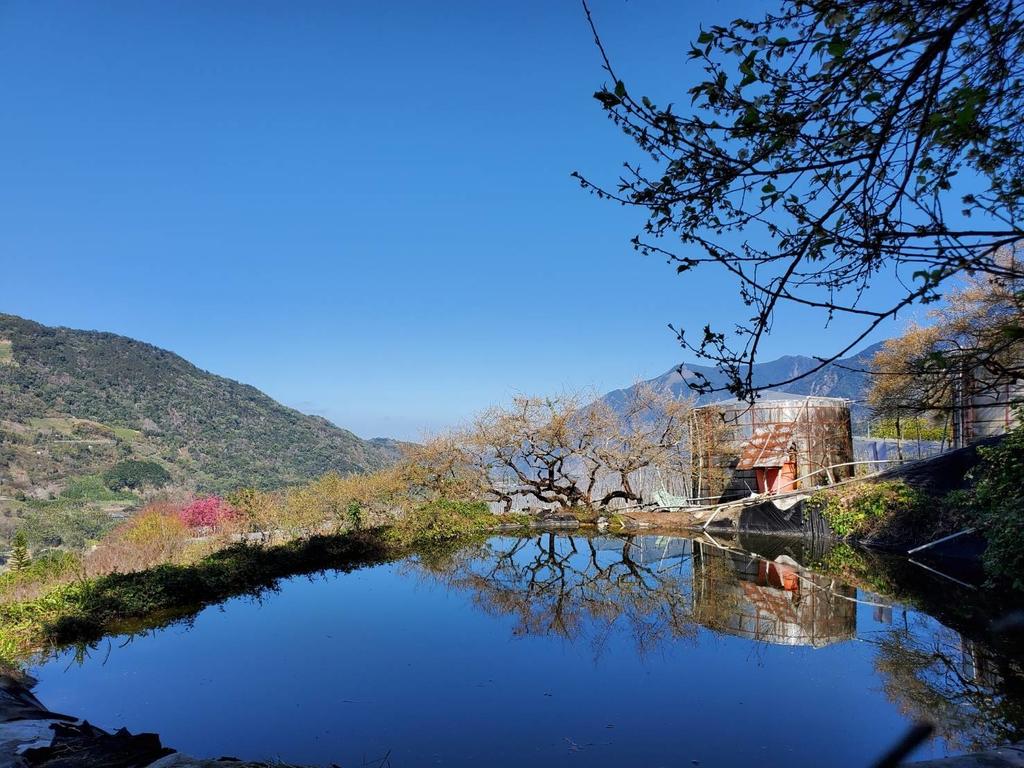 128650.jpg - 【南投.信義】1月季節限定美景。外坪頂蔡家秘境梅園。絕美水池倒影