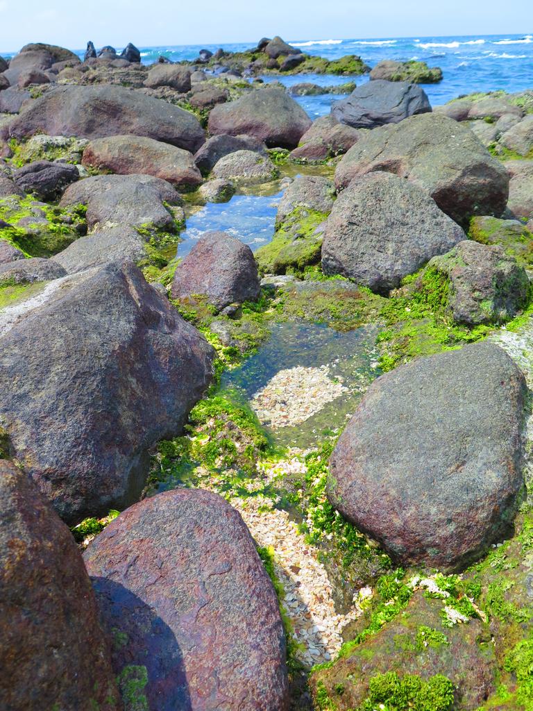 【台北】北海岸石門洞景點。美麗的貝殼砂海灘。熱門觀看夕陽&潮間帶景點:IMG_9599.JPG