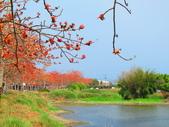 【台南】林初埤。季節限定美麗的木棉花道:IMG_9381.JPG