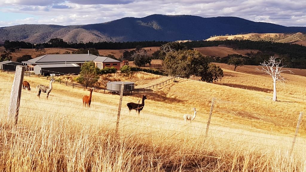 20190211_182420.jpg - 【澳洲.墨爾本】2019住宿推薦。Wirraway Farm Stay超美麗農場景致