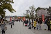 0405_伏見稻禾、鴨川、金閣寺、平野神社:DSC_0456.JPG