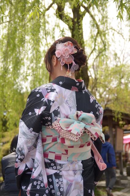 DSC_0733.JPG - 20160406-和櫻和服體驗、清水寺、祇園夜櫻