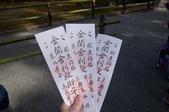 0405_伏見稻禾、鴨川、金閣寺、平野神社:DSC_0575.JPG